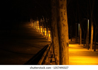 Light path in the park