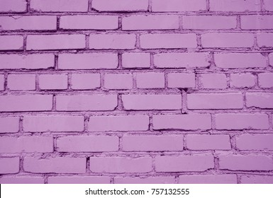 Light pink brick wall background.