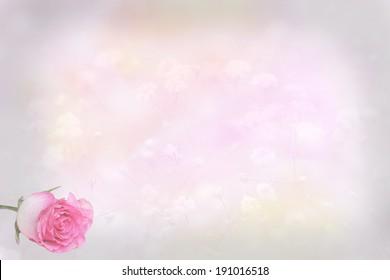 light pink floral background with rose bud, card design background