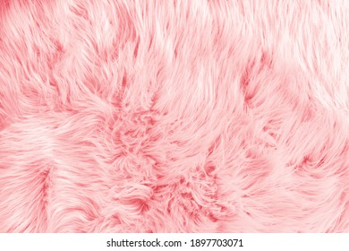 Light pink long fiber soft fur. Pink fur for background or texture. Fuzzy pink fur plaid. Shaggy blanket background. Fluffy fake textile fur. Flat lay, top view, copy space