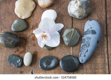 Light pink orchid flower with watter drops and stones on vintage wooden background