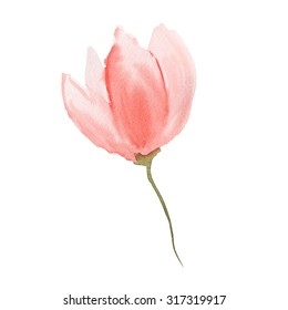 light pink watercolour flower on white background - template for greeting card and designs