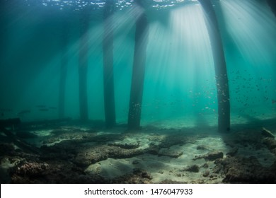 Light rays under a pier in south east Florida.