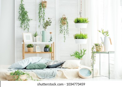 Light room with a bed and a large window. Concept interior, decoration, comfort in the house.