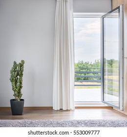 Light room with open balcony doors, cactus in pot standing on the floor