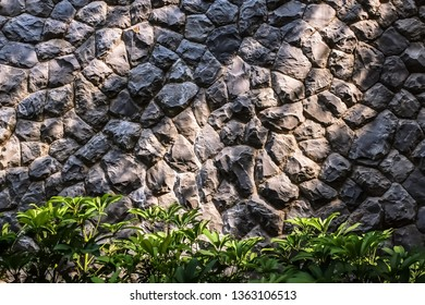 Light and shadow on stone wall with green bush bottom