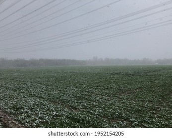 light snowfall over the field