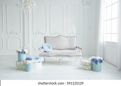 Light spring photo studio interior with blue flowers near the white sofa. minimalist room decor with daylight.
