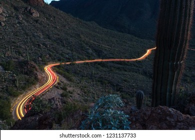 Light trails of passing traffic on scenic Gates Pass road in Saguaro National Park in Pima County, Tucson, Arizona. Teddy Bear Cholla Cactus, Brittle Bush and more. Red, green, yellow colors.