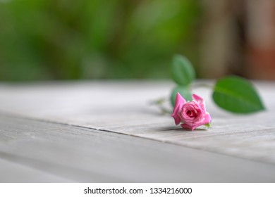Light wood background with a pink rose at the side and copy space the rest of the image