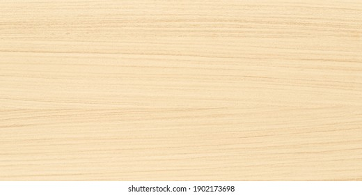 Light wood texture and background, wooden wall pattern