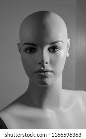 Light work with inanimate model, front lighting work, highlights work.