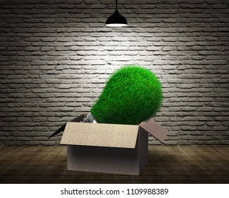 Lightbulb with green grass in the opened cardboard box, concept of ECO and green energy.