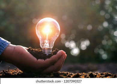 lightbulb on hand and sunshine. solar energy concept idea