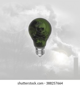 Lightbulb w/ Skull crossbones: Raise awareness about global warming/promote green energy/can be used as an idea or innovation concept.
