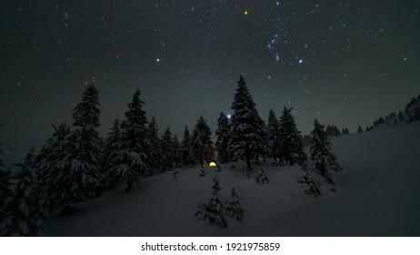 Lighten touristic tent among snowy fir trees beneah of the starry sky in winter mounatins. Carpathian mounatins, Ukraine, Holovcheska meadow by the Petros mounatin peak. Overnight stay in mountains.