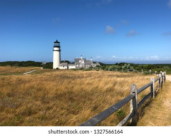 Lighthouse and buildings near a golden field
