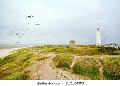 Lighthouse and bunker in the sand dunes on the beach of Blavand, Jutland Denmark Europe