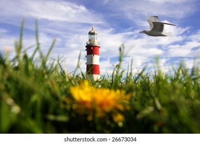 lighthouse with dandelion and with bird, Plymouth, UK