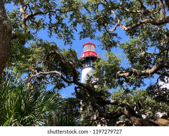 Lighthouse In Florida With Trees