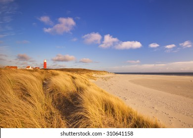 The lighthouse of the island of Texel in The Netherlands surrounded by tall sand dunes in beautiful early morning sunlight.