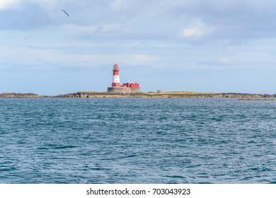 Lighthouse on the beach with a seagull