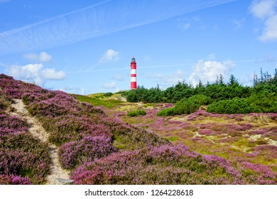 Lighthouse on the island Amrum at blue sky Germany