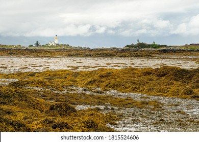 Lighthouse on the Isle of Ornsay seen from Isle of Skye in Scotland. Exposed seaweed and mudflat at low tide.