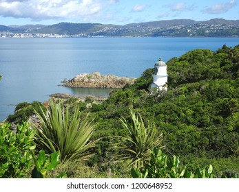 Lighthouse on south side of Somes Island Wellington harbour New Zealand