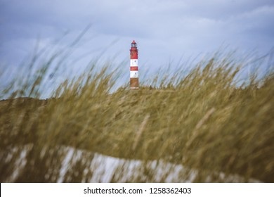 Lighthouse seen through sea grass of dunes in Amrum Germany.