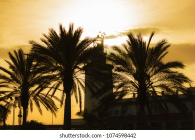 Lighthouse and tropical palm trees against the background of a sunset