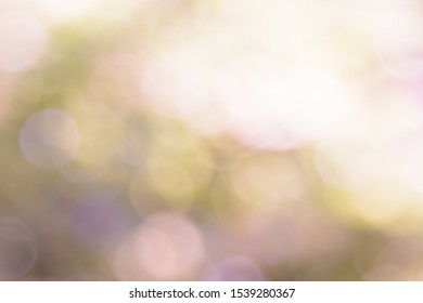 Lighting bokeh abstrack background and out focus