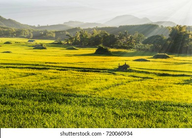 Lighting with cloud sky ,hill and green field at country side of Thailand.Lighting is the deliberate use of light to achieve a practical or aesthetic effect.  includes the artificial light.soft focus.