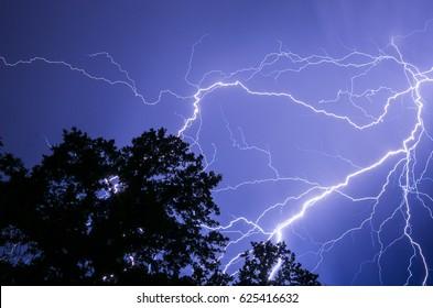 Lightning and an Oak Tree