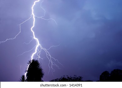 Lightning strike, silhouette of a tree in the foreground