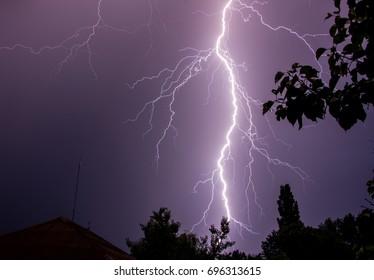 Lightning under trees on night sky