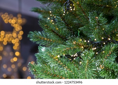 Lights in branches of the Christmas tree