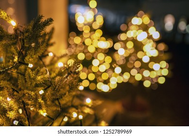 Lights of Christmas trees seen through another christmas tree