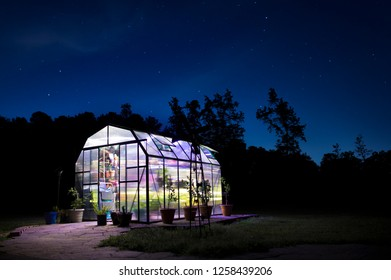 Lights glowing inside a greenhouse at night with brick walkway and stars behind