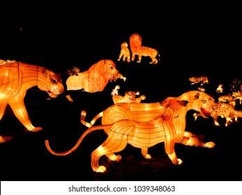 Lights and lanterns festifal, Singapore