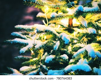 Lights and street decorations at small Christmas tree