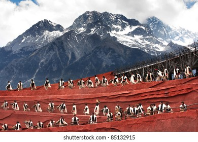 """LIJIANG, CHINA - APRIL 14:Actors participate in """"Impression Lijiang"""" live performance on April 14, 2009 at The Jade dragon snow mountain in Lijiang, China."""