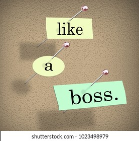 Like a Boss Expert Dominate Win Succeed Bulletin Board Saying 3d Illustration