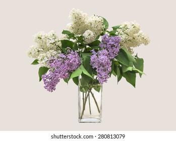 Lilac Bouquet in a transparent vase