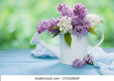 Lilac bouquet in white watering can on wooden table, green nature background. Template with empty space for gardening, greeting cards, easter, 8 march, womens day, mother's day.