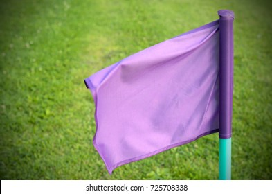 Lilac flags on the green grass of a football playing field