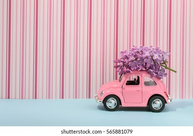 Lilac flower on cartoon toy car with empty space