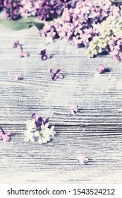 Lilac flowers on painted wooden background, selective focus. Retro stylization, vintage film filter