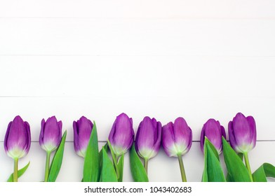 Lilac tulips on a white wooden background (space for text)