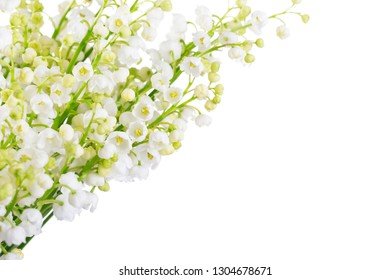 Lilies of the Valley isolated on a white background. Selective focus.